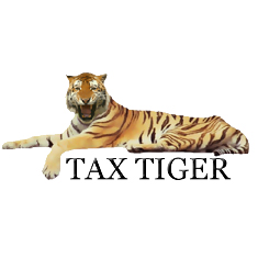 Tax Tiger Answers Questions About the IRS